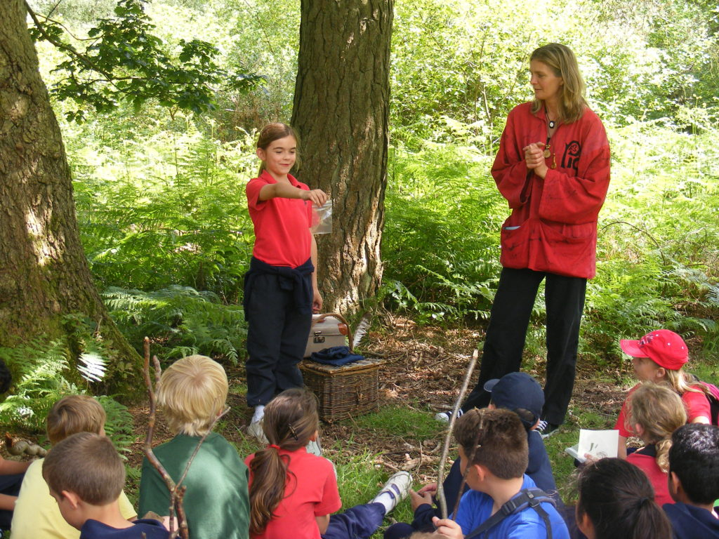 Wasseldine explore storytelling outside the classroom