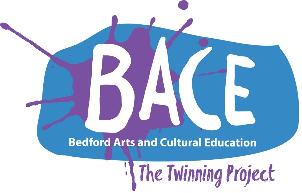 BACE Twinning Project logo
